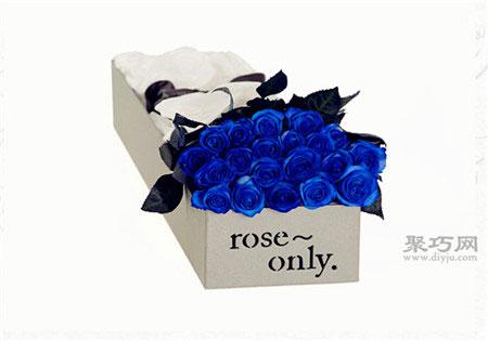 藍玫瑰花語是什么 藍玫瑰代表什么意思?