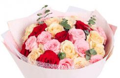 粉玫瑰之戴安娜玫瑰花語是什么?