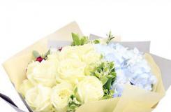 白玫瑰之雪山玫瑰花語是什么?送白玫瑰的寓意是什么?