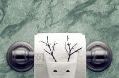 卫生纸折纸图解教程 手纸折纸艺术欣赏