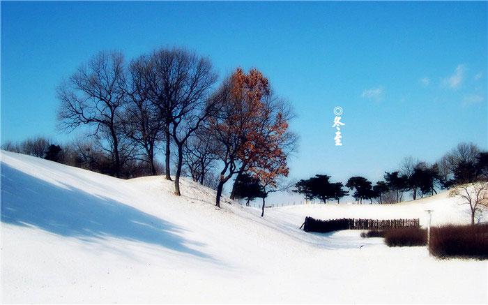 24節氣之冬至節氣圖片大全