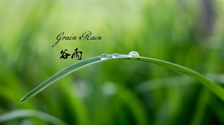 24节气之谷雨节气民介绍