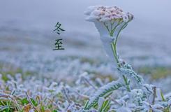 24節氣冬至由來 二十四節氣冬至節氣介紹