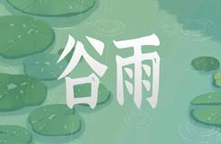 谷雨三候是什么意思:萍始生 鳴鳩拂奇羽 戴勝降于桑