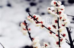 立冬節氣有什么風俗 二十四節氣立冬民俗文化介紹