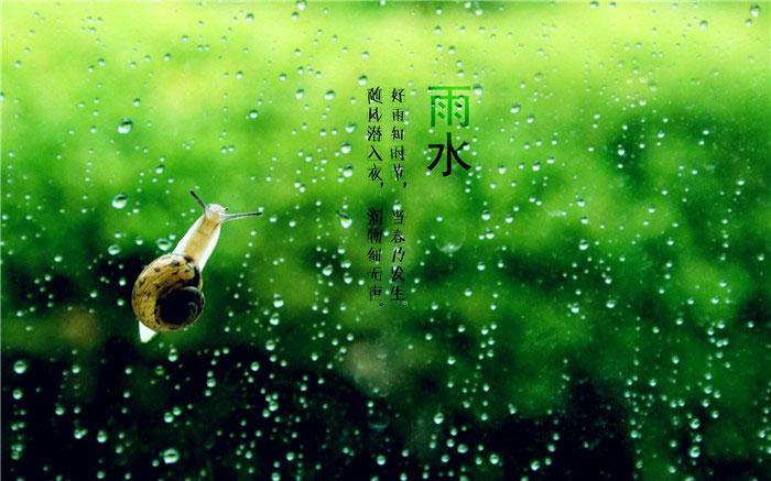 雨水节气唯美图片