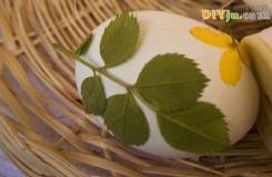 如何制作彩蛋 创意彩蛋制作方法