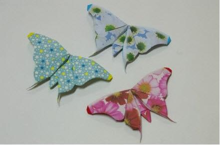 简单蝴蝶折纸图解教程:教你如何叠纸蝴蝶