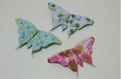 簡單蝴蝶折紙圖解教程:教你如何疊紙蝴蝶