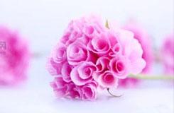 超唯美用紙折玫瑰花教程 紙玫瑰的折法圖解