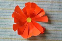 简单折纸花 简单几步折纸非洲菊花