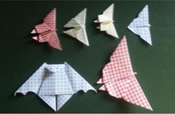 蝴蝶折纸大全图解教程 轻松学怎么用纸折蝴蝶
