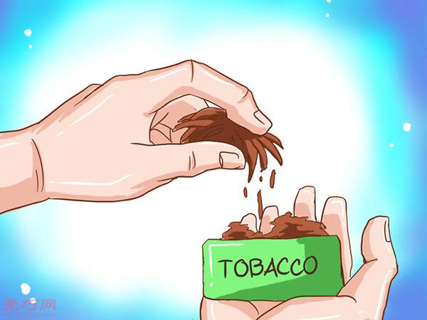 无烟烟草怎么嚼 如何嚼烟草 3