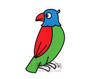 鹦鹉简笔画的画法步骤5