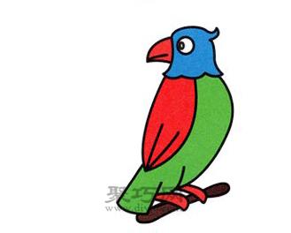 鹦鹉简笔画的画法步骤6
