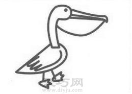鹈鹕简笔画的画法步骤4