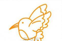 蜂鸟简笔画一步一步教你长嘴蜂鸟怎么画好看