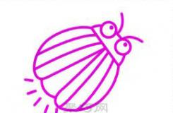 简单又好看的会发光萤火虫简笔画教程