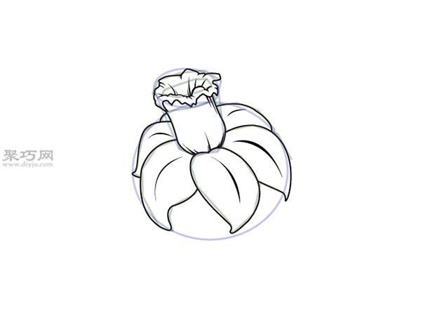 水仙花画法步骤 9