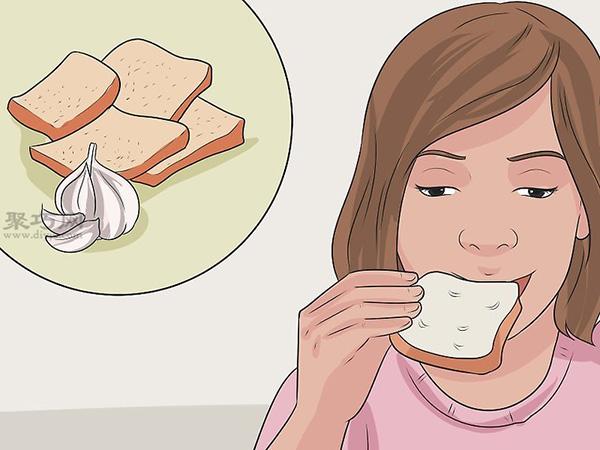 如何预防跳蚤叮咬 11