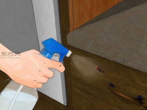 怎樣使用殺蟲劑消滅蟑螂 9