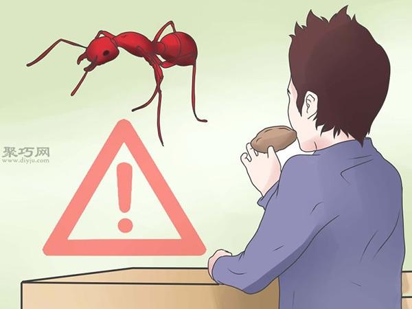 怎么防止糖蚁出没 1