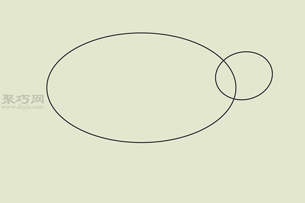 画画真实的乌龟的步骤 10