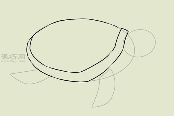 画画真实的乌龟的步骤 12