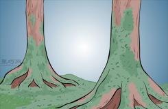 怎么选择苔藓 一起学种植苔藓的方法