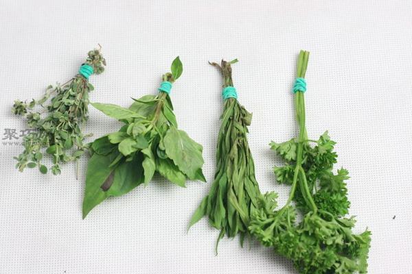室内干燥法干燥草本植物图片教程 15