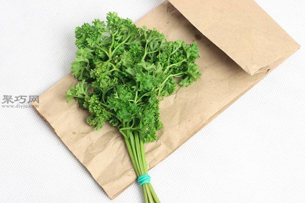 室内干燥法干燥草本植物图片教程 16