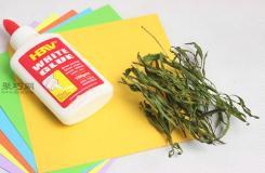 干燥剂干燥法干燥草本植物教程