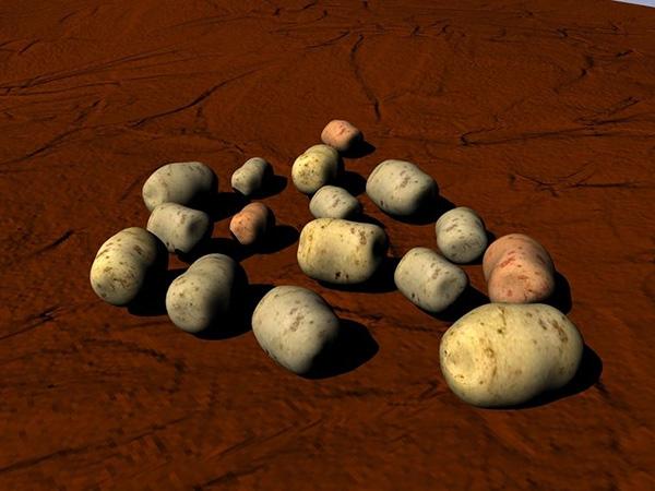 种土豆图解教程 1