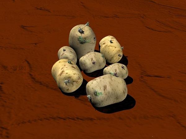 种土豆图解教程 3