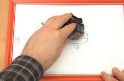 怎样用清洁剂擦掉干擦白板上的旧痕迹教程图解