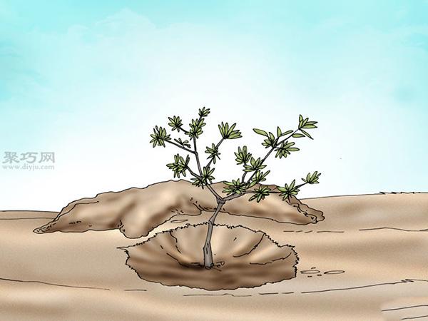 栽种杜鹃花教程图解 5