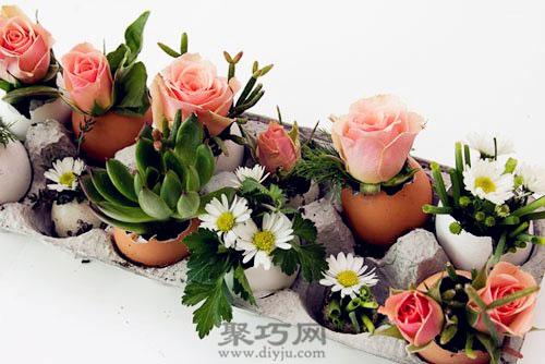 鸡蛋壳妙用 鸡蛋壳手工制作绿植小盆栽