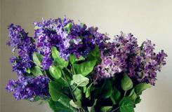 吸管变废为宝DIY创意吸管花瓶教程