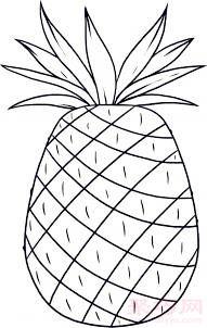 幼儿简笔画菠萝的画法 教你如何画菠萝简笔画