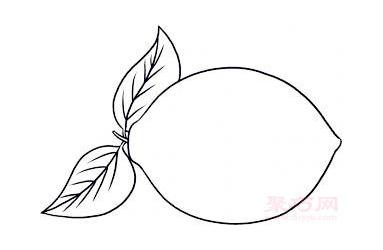 儿童简笔画柠檬的画法 教你怎么画柠檬简笔画