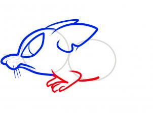 鼠简笔画第5步
