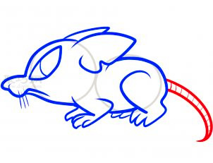 鼠简笔画第7步