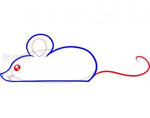 小老鼠简笔画第2步