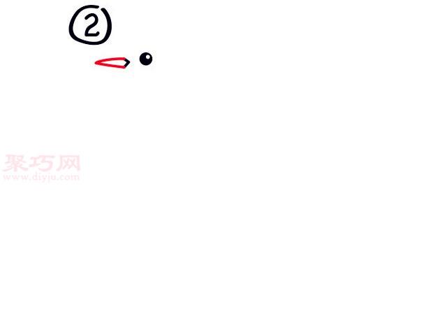 罗宾鸟简笔画第2步