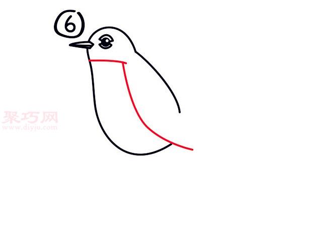 罗宾鸟简笔画第6步