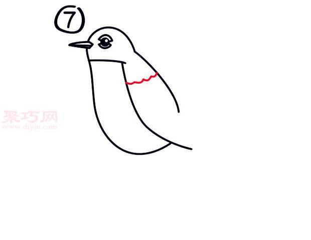 罗宾鸟简笔画第7步