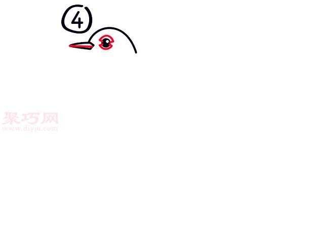 罗宾鸟简笔画第4步
