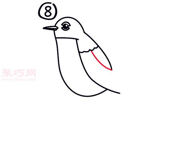罗宾鸟简笔画第8步