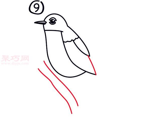罗宾鸟简笔画第9步