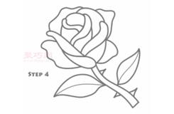 简易画玫瑰花的步骤 画玫瑰花的简笔画图片